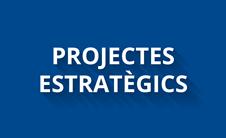 Projectes estratègics