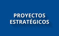 Proyectos estratégicos