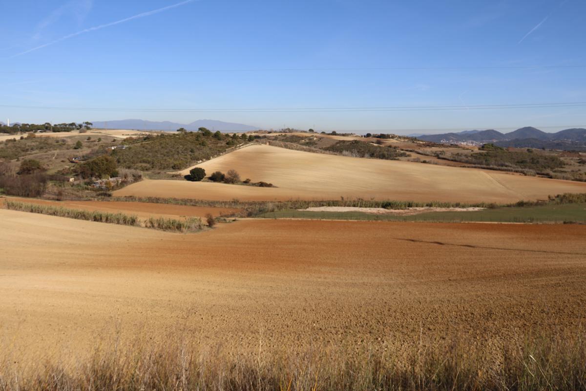 Zona agrícola Montcada-Pla Reixac
