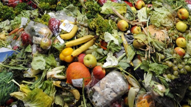 Menjar malbaratat. Font: Olio
