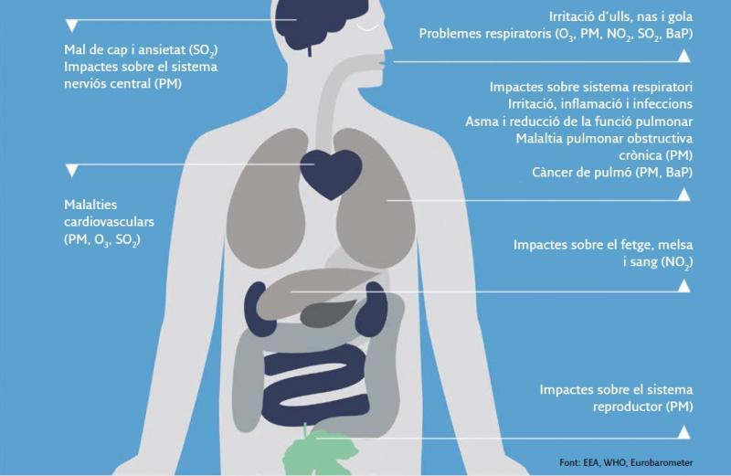Infografia sobre els efectes de la contaminació atmosfèrica sobre la salut. Font: Pla d